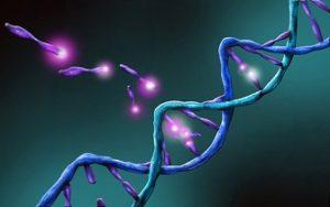 Frica de a nu putea transmite materialul genetic